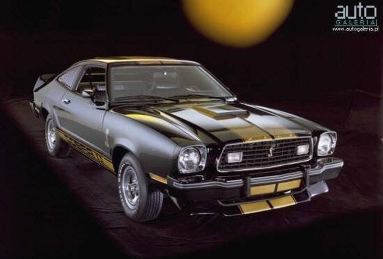 1975 Ford Mustang Cobra Car Picture